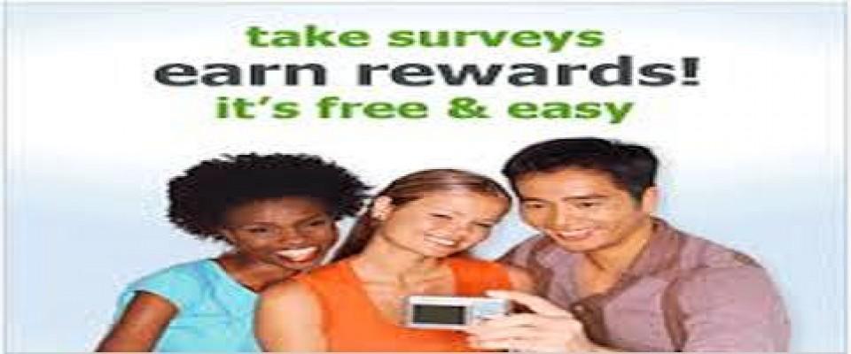 My Survey Income